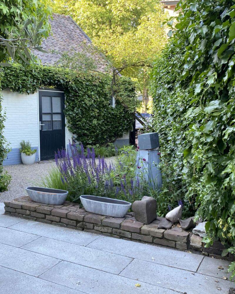 Natuurlijke patiotuin – Esch